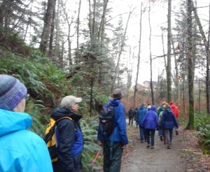 CVN sponsored a special walk to Baybrook on Feb. 8 2015